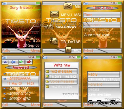Dj Tiesto - Theme & Flash Menu 1.1 for SE [240x320]
